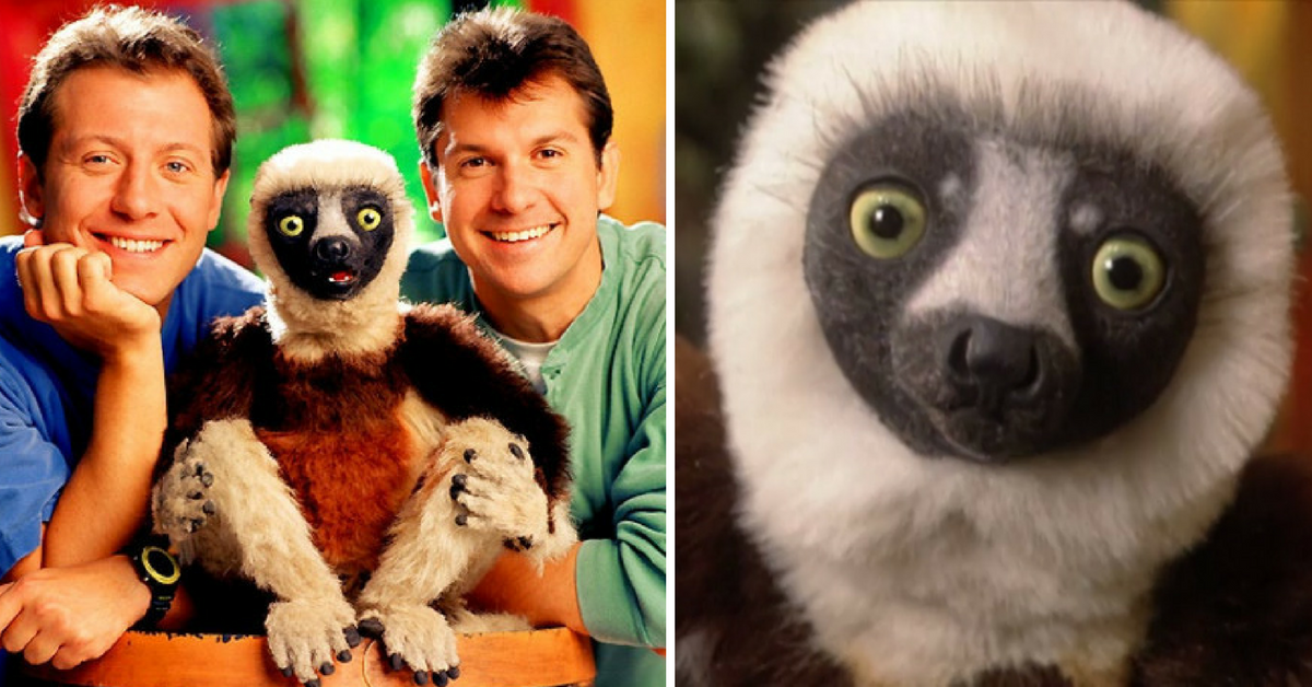 Zoboomafoo Puppet Dare You To Read This ...