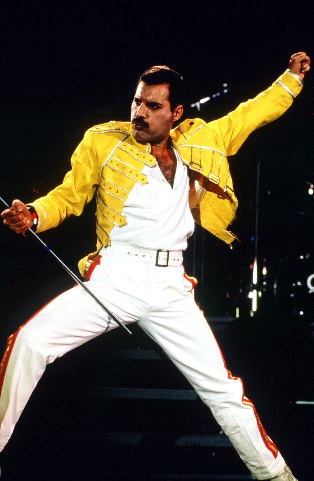 Image result for Freddie Mercury best outfits