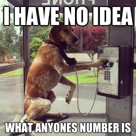 Dog phone booth