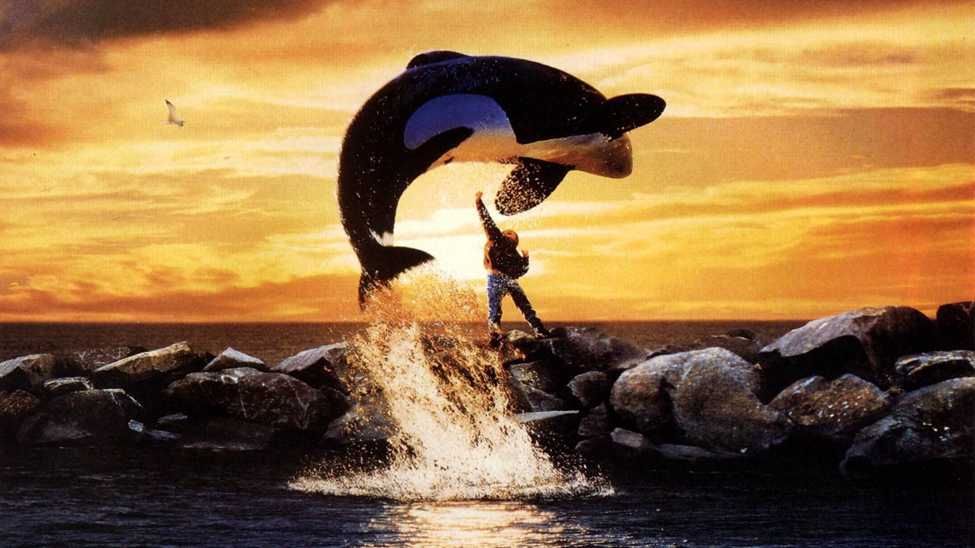 Free Willy Jump Scene