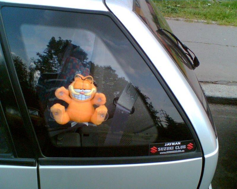 Garfield Car Window