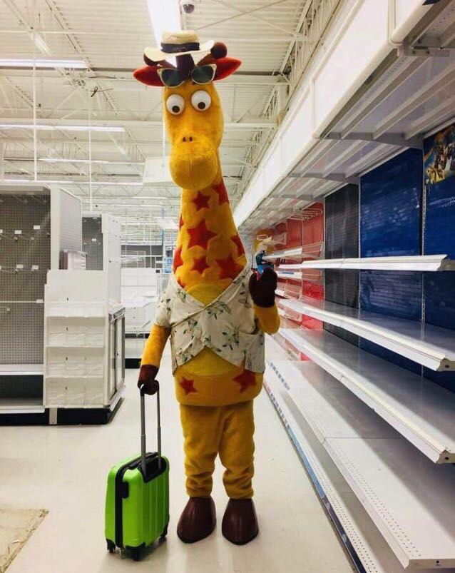 Toys R Us closing, Geoffrey leaving